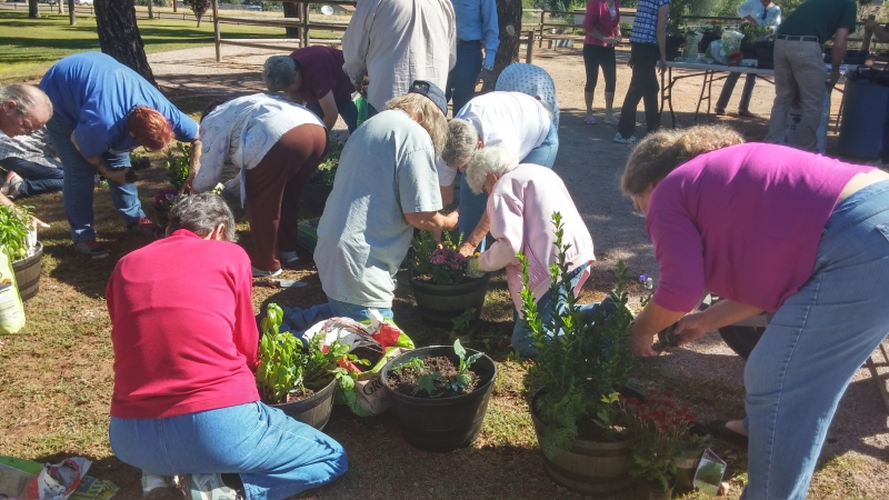 People arranging their plants in their pot.