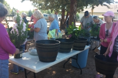 People picking out plants.