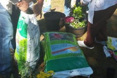 People planting and opening a bag of dirt.