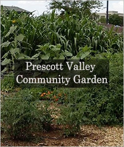 Prescott Valley Community Garden