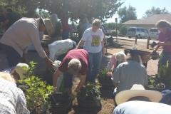 People planting.